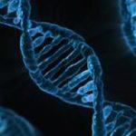大腸がんの遺伝関係。家族に大腸がん患者がいるけど遺伝するの?
