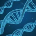 遺伝的にがんになりやすいがん家系があるって本当?